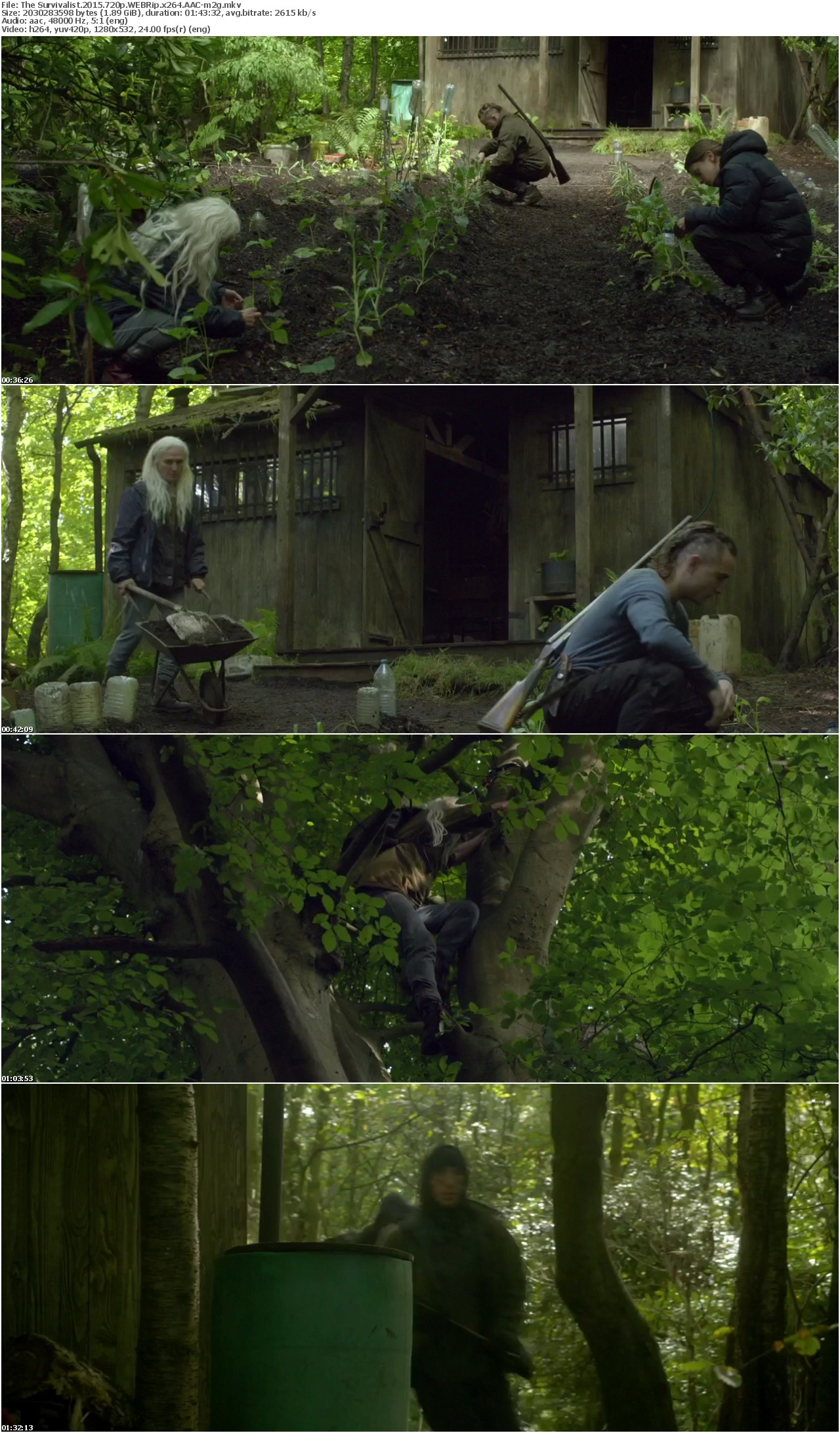 The Survivalist 2015 720p WEBRip x264 AAC-m2g