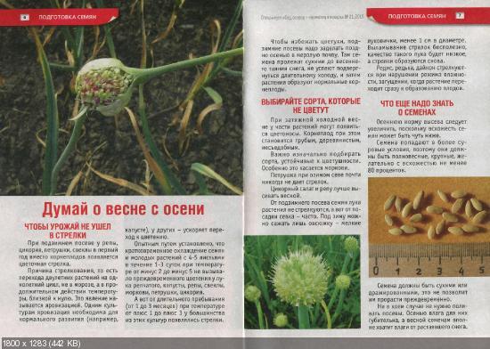 Сад, огород - кормилец и лекарь. Спецвыпуск №21 (ноябрь 2015)