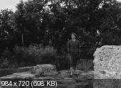 ����������� � ������ / Viaggio in Italia (1954)