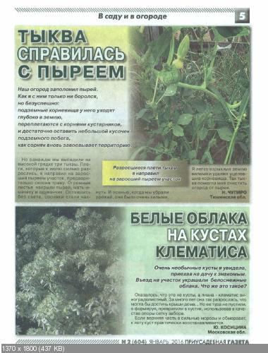 Приусадебная газета №2 (январь 2016)