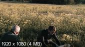 http://i74.fastpic.ru/thumb/2016/0303/50/_0eda901882b763ee126d9c8ea8e16a50.jpeg