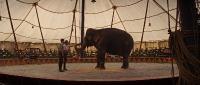 Воды слонам! (2011) BDRip 1080p от NNNB