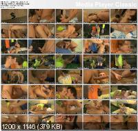 T0o B!g F0r Tw!nks 3 (2011/DVDRip)