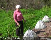 Кизима Галина. Огород без хлопот (2011) DVDRip
