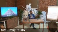 Павел Кочкин, Михаил Дашкиев, Петр Осипов. Выбор ниши (2015) Видеокурс