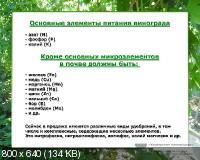 Сергей Сукманюк, Иван Черепяный. Университет виноградаря (2012) Видеокурс