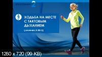 Здоровое дыхание-здоровый организм (2016) Тренинг
